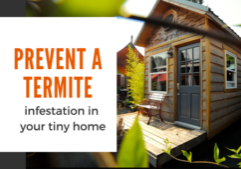 prevent termites_tiny home living