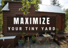 tiny house tiny yard